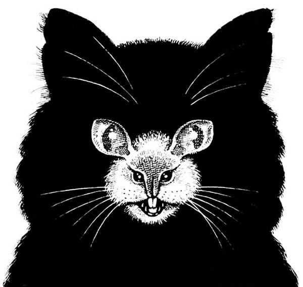 OPTIČKA ILUZIJA: Na slici je miš ili mačka?