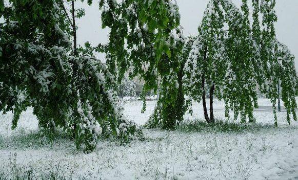 Meteorolozi najavljuju snijeg