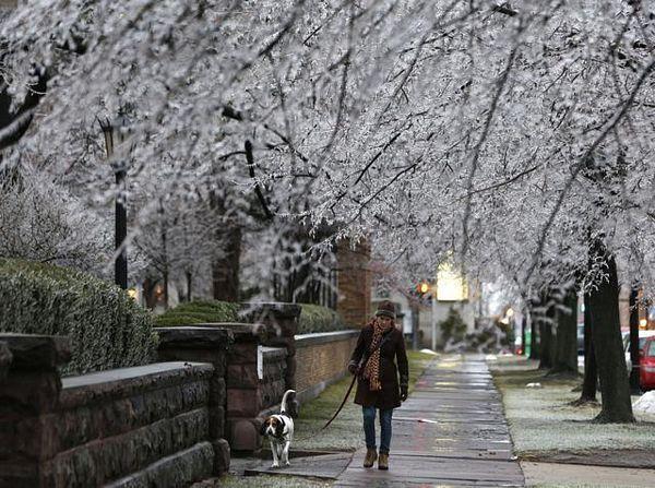 Čudno vrijeme u SAD: Od leda do ljeta