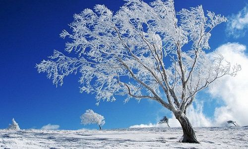 Sutra počinje zima
