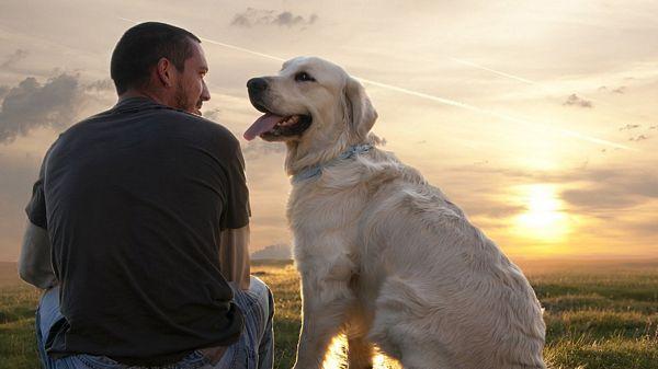 Evo zašto su psi i ljudi najbolji prijatelji