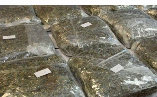 Na granici Srbije i Hrvatske zaplijenjeno 140 kg marihuane