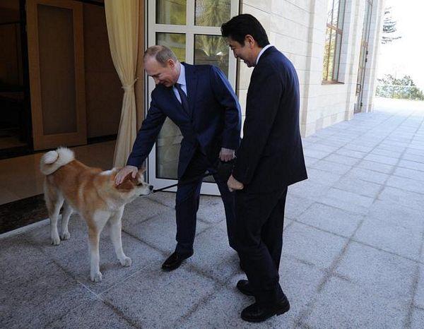 Tvrdoglavi pas kom ni Putin ne može ništa (FOTO)