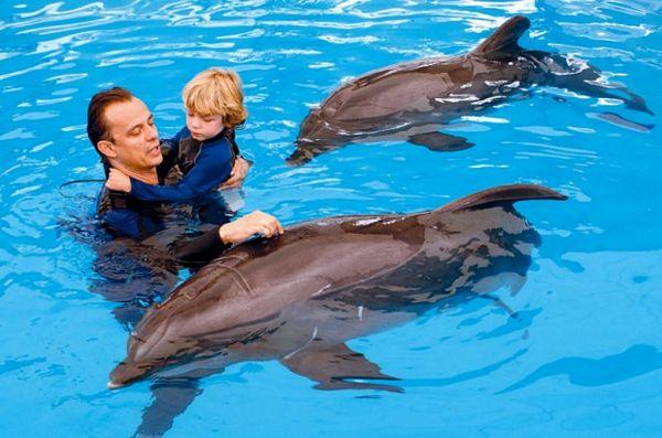 Delfini liječe i dušu i tijelo