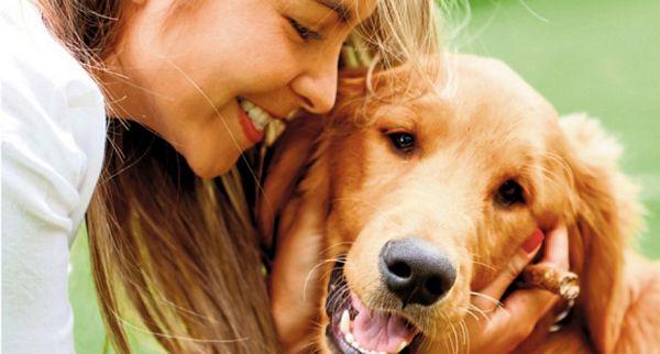 Vlasnici pasa atraktivniji i srećniji