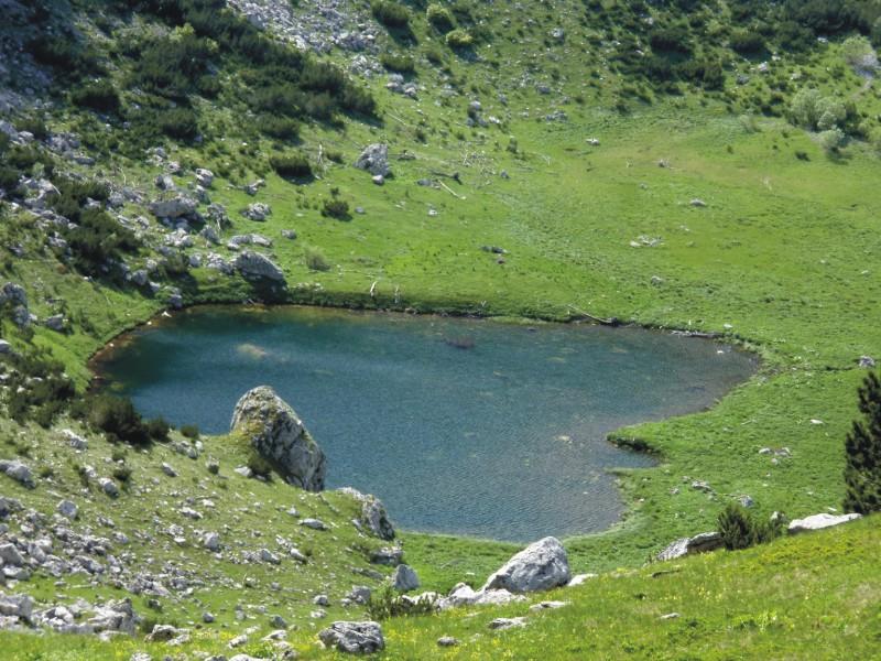 NP Sutjeska: Glečerskim jezerima prijeti izumiranje