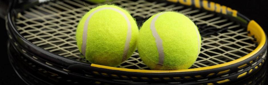 Uspješna srpska teniska noć