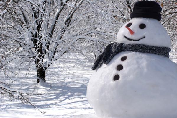 Britanski meteorolozi: Stiže najhladnija zima u posljednjih 100 godina