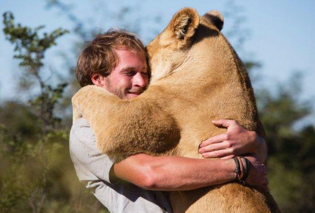 Ne zaboravlja: Lav zagrlio čovjeka koji mu je spasio život (VIDEO)