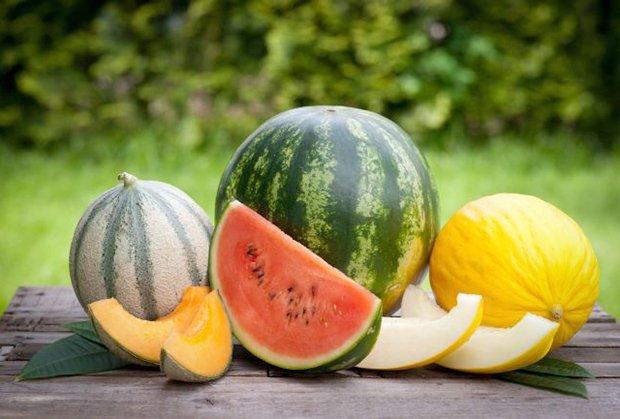 Zdravo osvježenje: Ljekovita svojstva lubenica i dinja