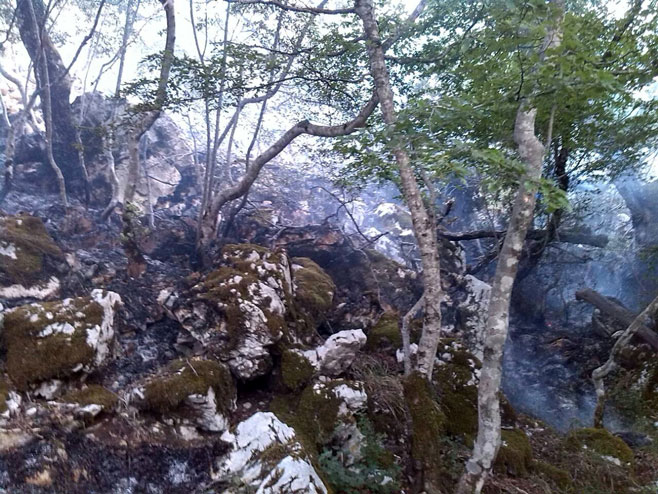 Okolina Trebinja: Nakon 6 dana ugašen i posljednji požar