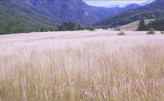 Sjajan video sa OK festa: Šta ste propustili na Sutjesci