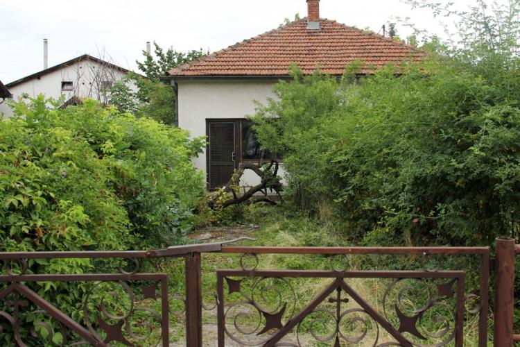 Zapuštena dvorišta legla zmija