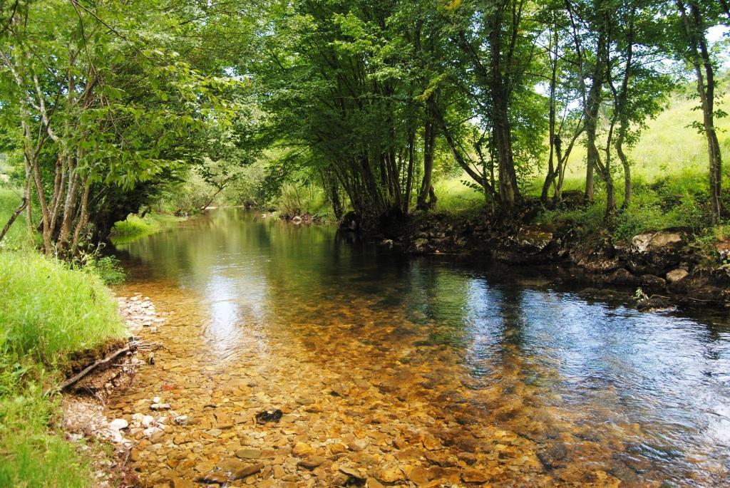 Za rashlađivanje: Razglednica sa rijeke Krupe