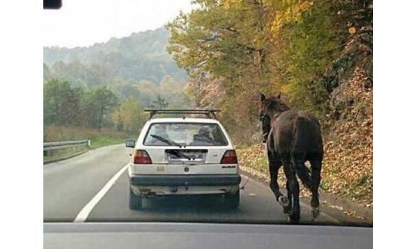 FOTO: Kako odvesti konja u Han Kola?