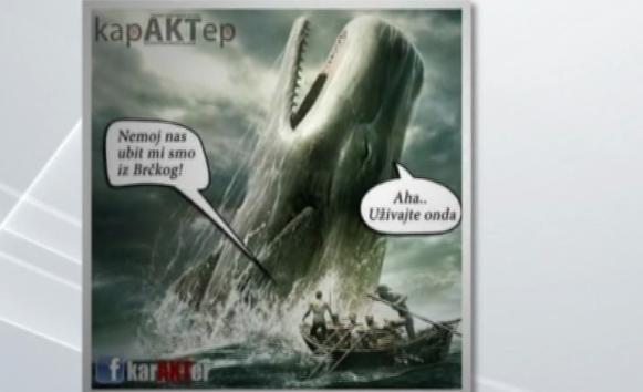 Vlada Brčkog brine o kitovima iz Atlanskog okeana