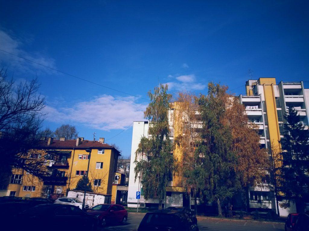 Pedeset nijansi žute (FOTO)