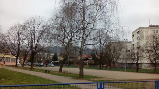 Banjaluka: Mrtva lisica u dvorištu osnovne škole