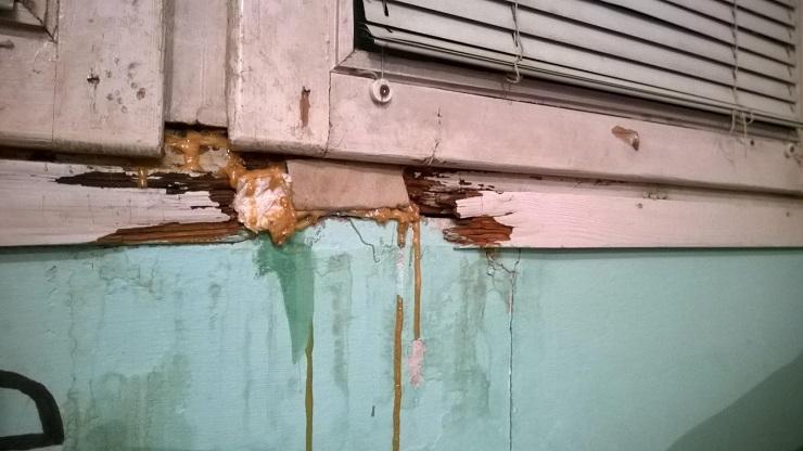 Zavirili smo u Studentski dom u Banjaluci (FOTO)