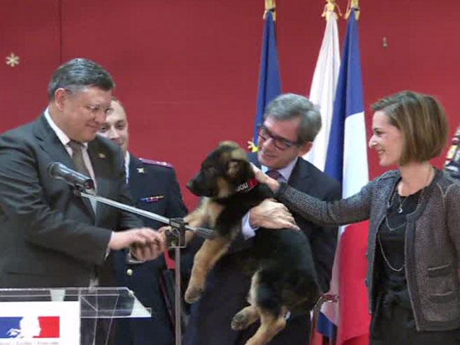 Ruski policajci poklonili štene francuskim kolegama