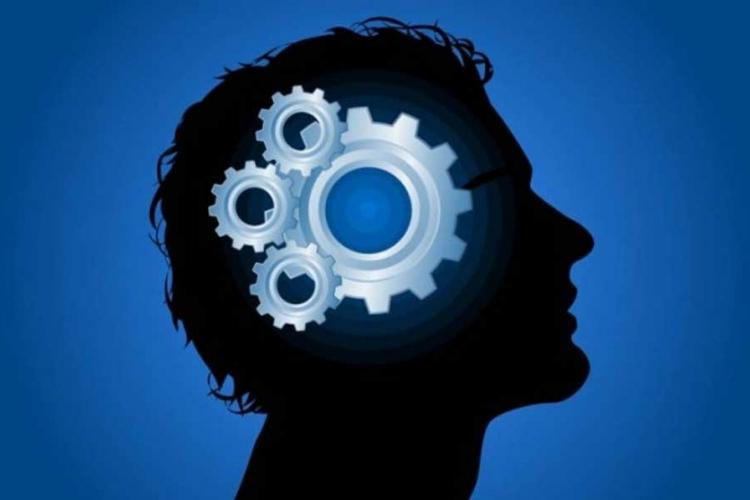 Nisu svi pametni na isti način: Otkrijte koju inteligenciju posjedujete