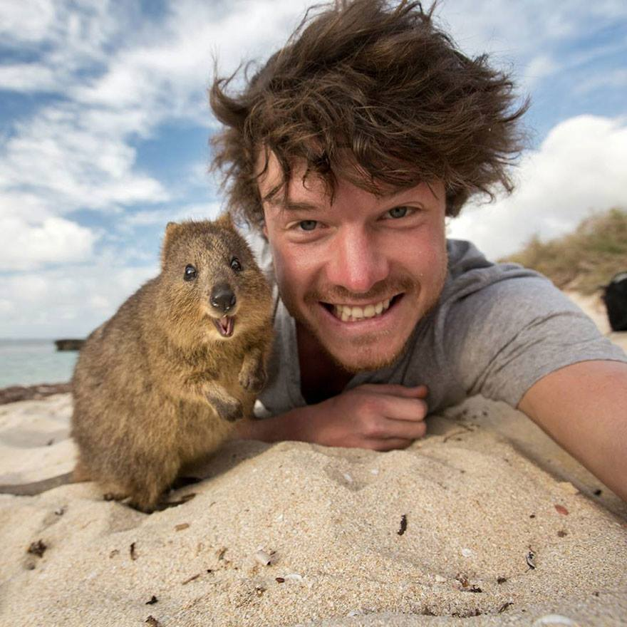 Čovjek koji je usavršio selfije sa životinjama (FOTO)