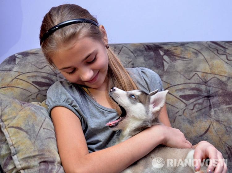 Putin ispunio želju djevojčici iz Sibira: Maleni haski za divnu Olgu (FOTO, VIDEO)