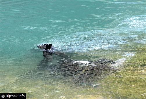 Teška saobraćajka kod Mostara: Četvoro se utopilo kada je automobil sletio u jezero