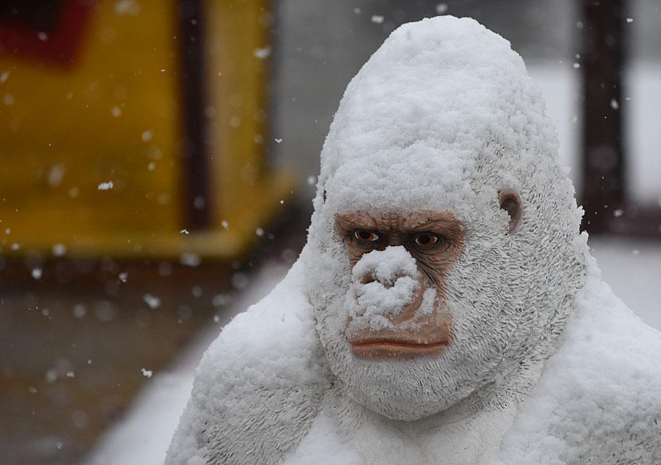 Prijedlog Vladi Srpske: Sada usvajajte zakone, niko po ovom snijegu ne može na proteste