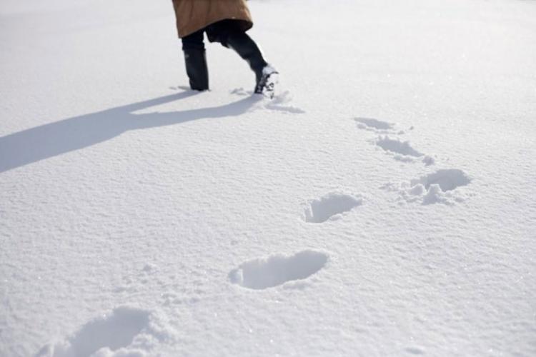 Kao Ivica i Marica: Lopov tragovima u snijegu doveo policiju do svoje kuće