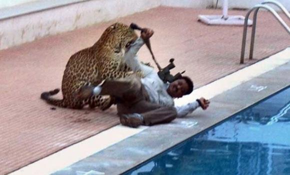 VIDEO: Leopard ušao u školsku zgradu i povrijedio šest ljudi