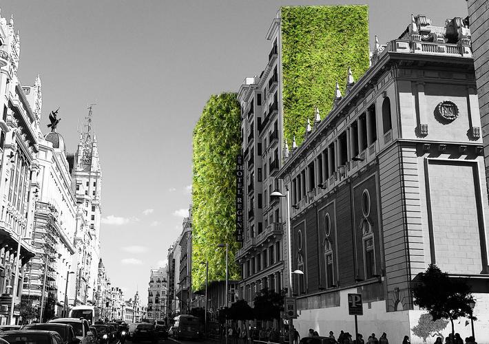 Madrid 9