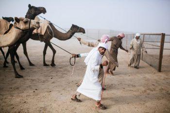 kamila 1