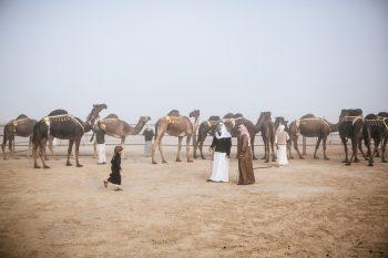 kamila 2