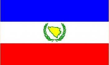 zastava 7