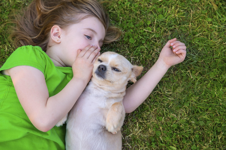 8 razloga zašto bi dijete trebalo imati kućnog ljubimca