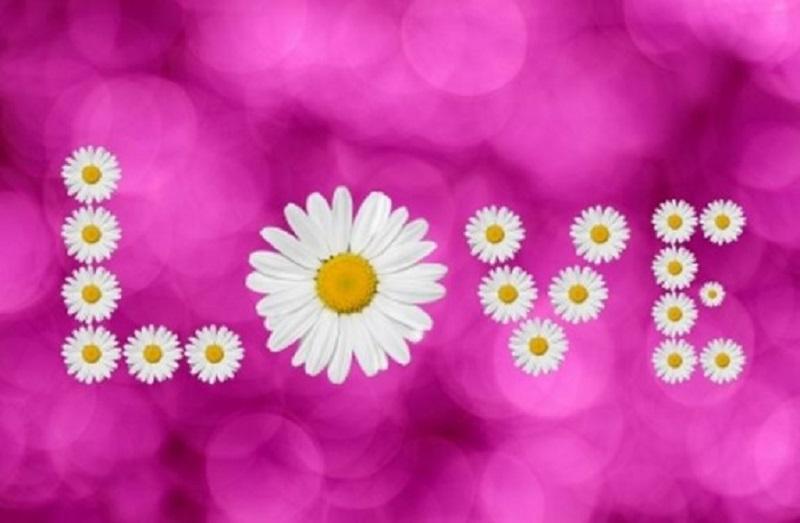 Proljeće je – zaljubite se!