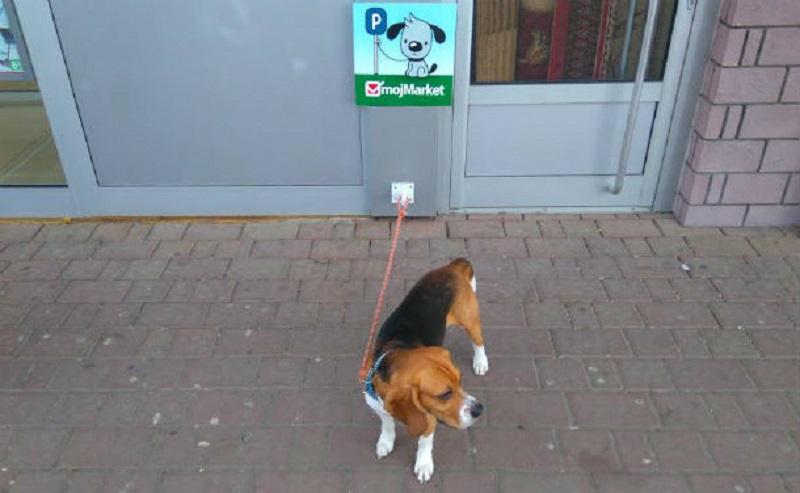 Parking za pse u Banjaluci