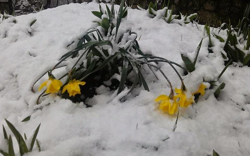 """Prvog maja – """"zima"""""""""""