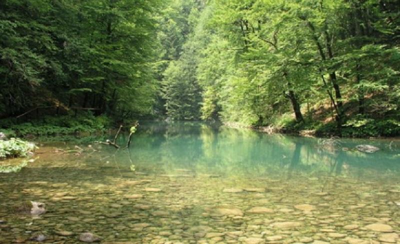 Čudo u BiH: Slijepi dječak progledao na Đurđevdan