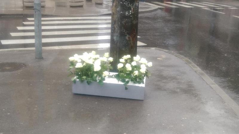 Sarajevo: Ruže vraćene u Dobrovoljačku