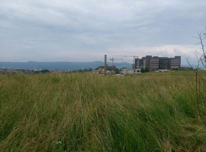 Banja Luka: Hoće li biti košenja trave u okolini zgrade UKC-a?