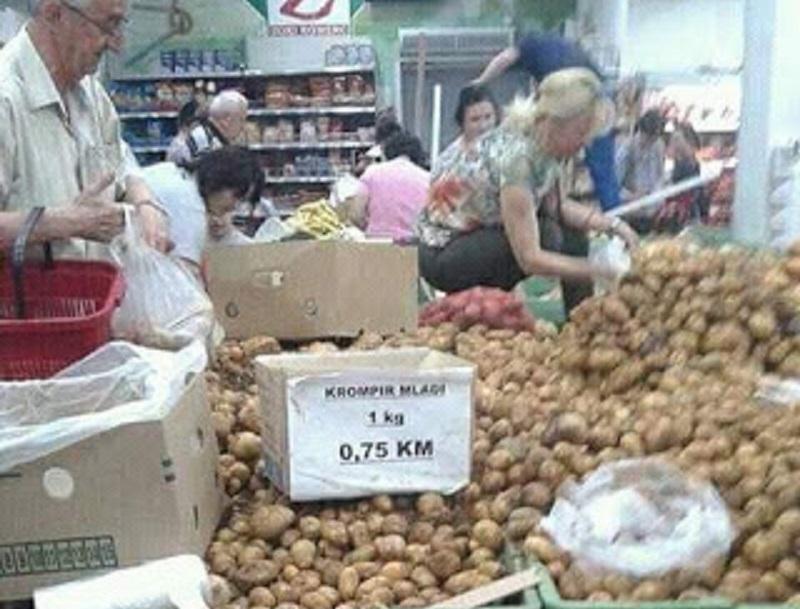 FOTO dana: Valja probrati krompir