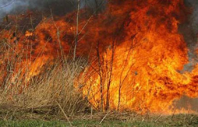 Veliki požar u Trebinju