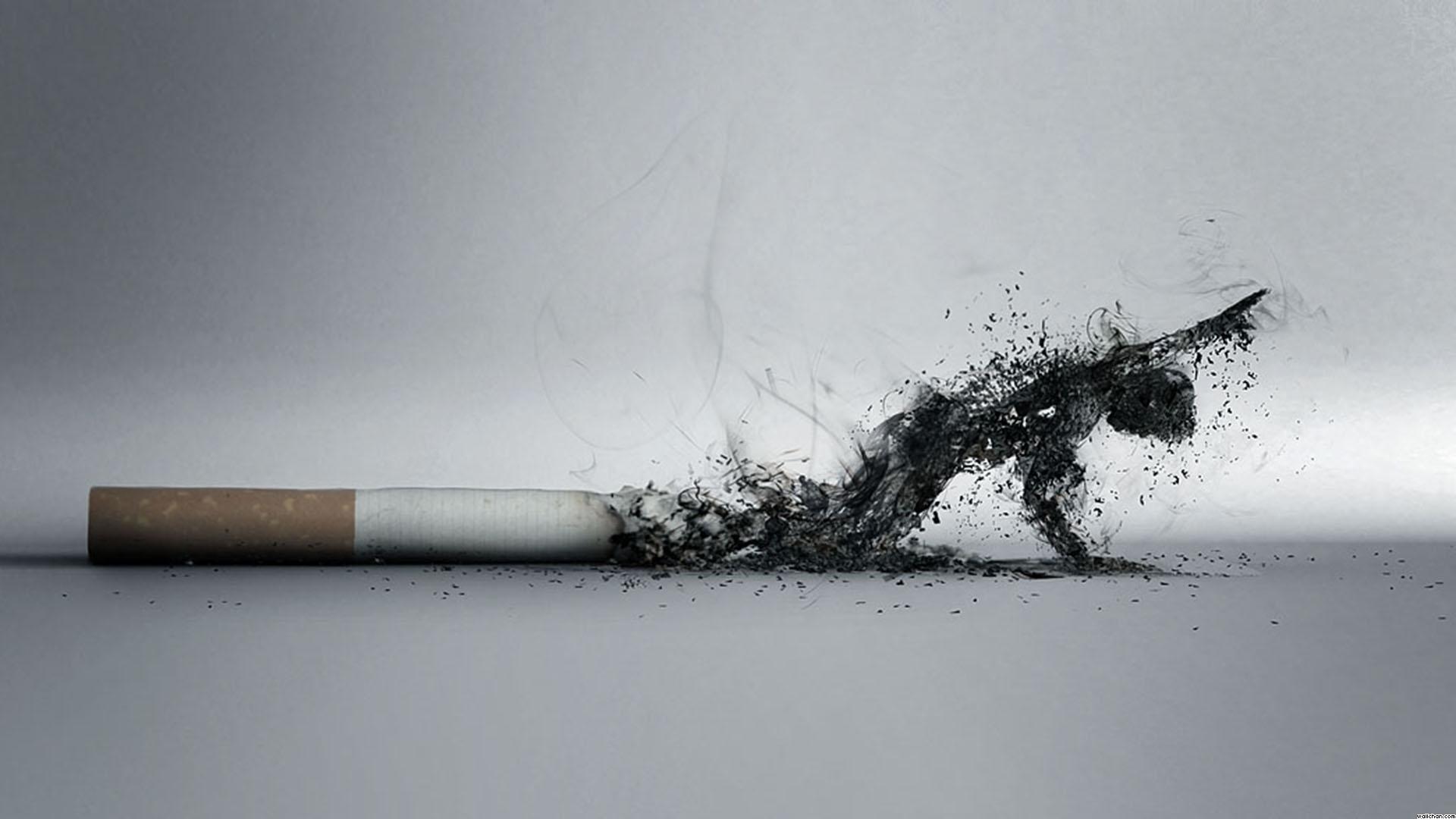 Koliko godišnje u BiH potrošimo na cigarete