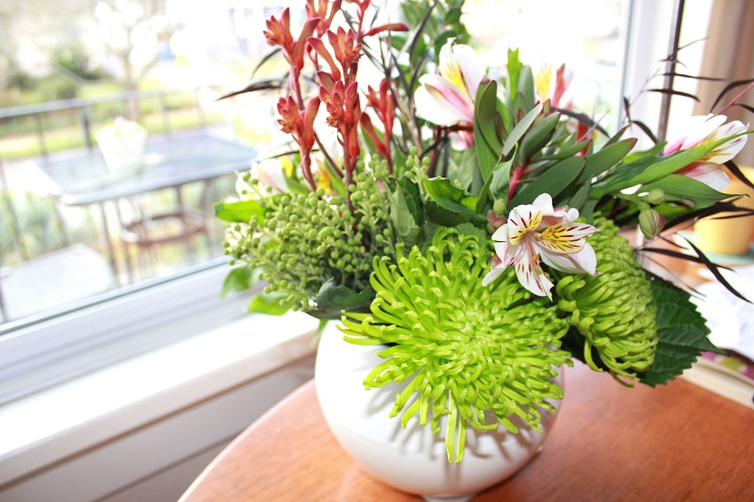 Njega cvijeća u ljetnom periodu