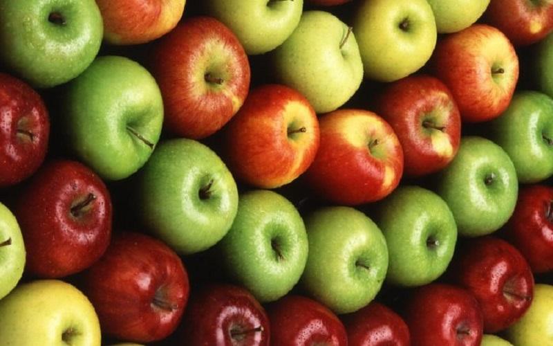 Voćari: Jabuke spremne za Rusiju