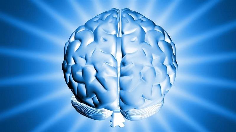 I mozak ima bore