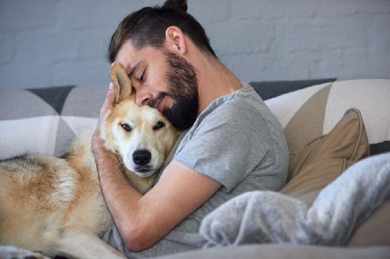 11 stvari koje psi ne vole, a ljudi im uporno to rade!