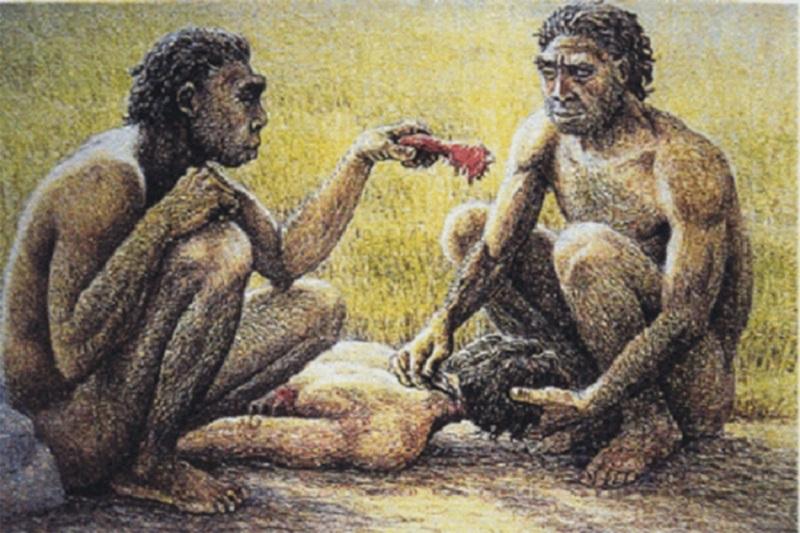 Bogataš kupio robinju da bi gledao kako je jedu kanibali?